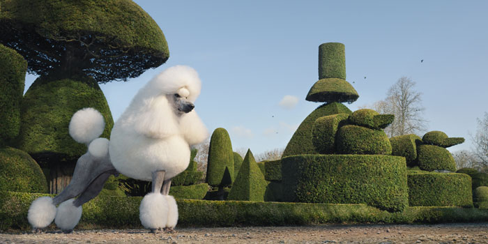 Tim Flach, Topiary